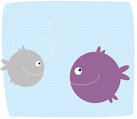 Confused About Which Fish Are Safe and Eco-friendly?