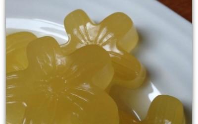 Easy Sour Gummy Snack Recipe