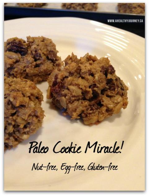 Allergy-free Paleo Cookie Recipe