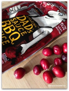 cranberries & BBQ Sauce packet