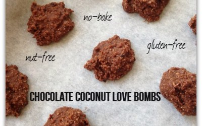 Chocolate Coconut No-Bake Treats