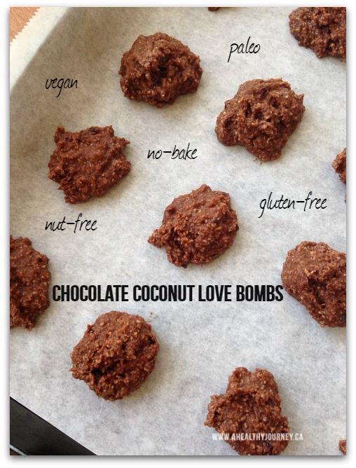 Chocolate Coconut No-Bake Treats