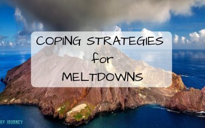 Coping Strategies for MELTDOWNS